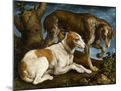 Deux chiens de chasse attachés à une souche-Jacopo Bassano-Mounted Giclee Print
