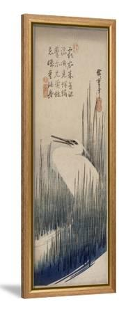 Héron blanc dans les roseaux-Ando Hiroshige-Framed Stretched Canvas Print