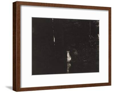 A Lynx Photographed at Night by Wildlife Photographer George Shiras-George Shiras-Framed Photographic Print