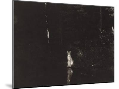 A Lynx Photographed at Night by Wildlife Photographer George Shiras-George Shiras-Mounted Photographic Print