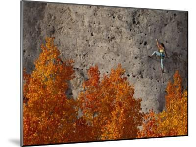 A Female Climber on a Cliff Wall-Bill Hatcher-Mounted Photographic Print