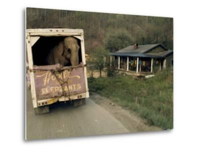 An Elephant Rides to the Next Show in the Back of a Circus Truck-Jonathan Blair-Metal Print
