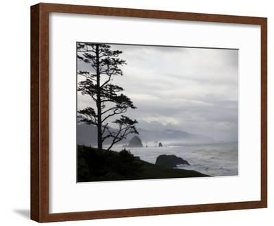 Silhouette of a Tree with the Rocky Oregon Coast in the Background-Michael Hanson-Framed Photographic Print