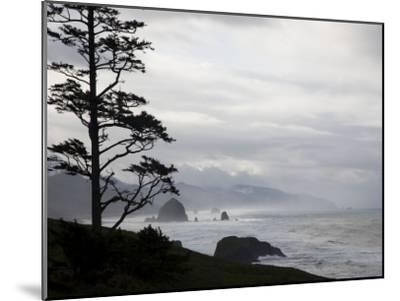 Silhouette of a Tree with the Rocky Oregon Coast in the Background-Michael Hanson-Mounted Photographic Print