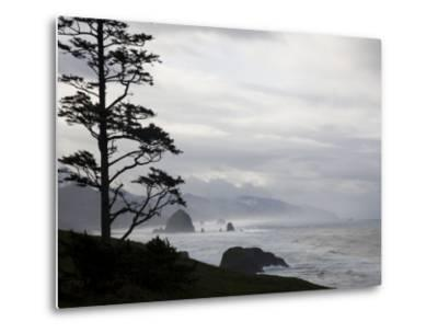 Silhouette of a Tree with the Rocky Oregon Coast in the Background-Michael Hanson-Metal Print