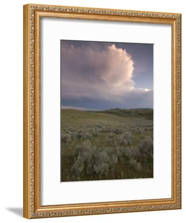 Thunderclouds Gather Above Little Missouri National Grasslands-Phil Schermeister-Framed Photographic Print