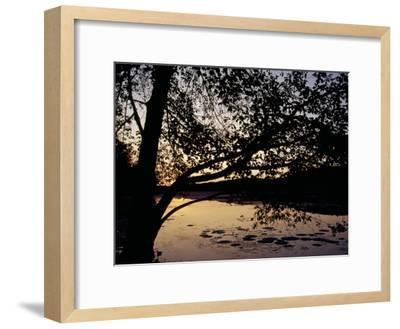 Sunset at Hematite Lake-Raymond Gehman-Framed Photographic Print
