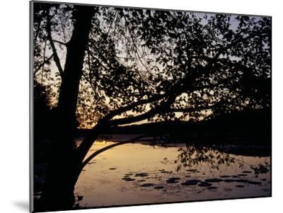Sunset at Hematite Lake-Raymond Gehman-Mounted Photographic Print