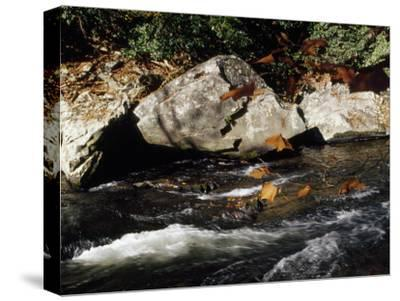 Water Rushing Past Boulders Along the Banks of the Nantahala River-Raymond Gehman-Stretched Canvas Print