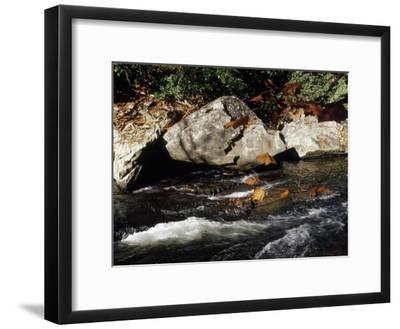 Water Rushing Past Boulders Along the Banks of the Nantahala River-Raymond Gehman-Framed Photographic Print