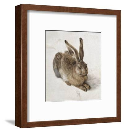 Hare-Albrecht D?rer-Framed Premium Giclee Print
