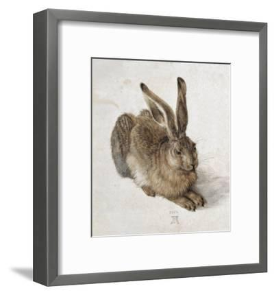 Hare-Albrecht D?rer-Framed Art Print