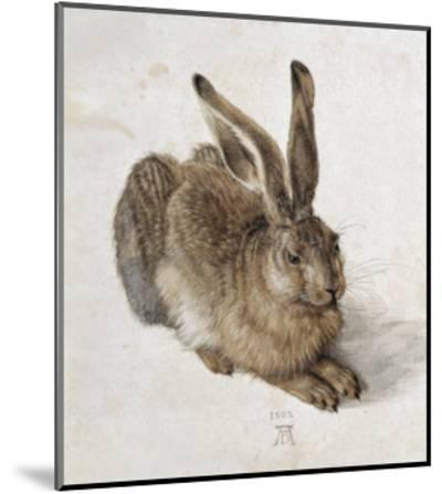 Hare-Albrecht D?rer-Mounted Art Print