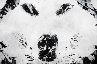 Lone Wolves-Alex Cherry-Stretched Canvas Print