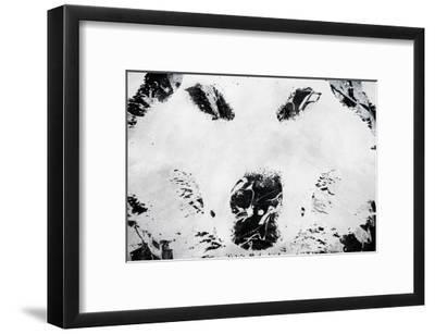 Lone Wolves-Alex Cherry-Framed Art Print