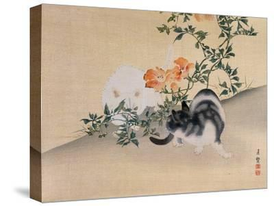 Two Cats, Illustration from 'The Kokka' Magazine, 1898-99-Japanese School-Stretched Canvas Print