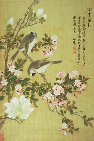 Crabapple, Magnolia and Baitou Birds-Ma Yuanyu-Stretched Canvas Print