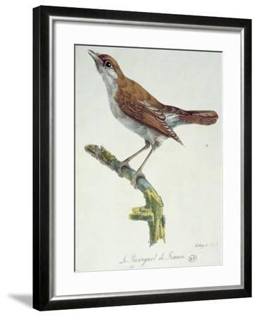The Nightingale of France, C.1830-Paul Louis Oudart-Framed Giclee Print
