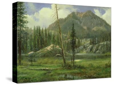 Sierra Nevada Mountains-Albert Bierstadt-Stretched Canvas Print