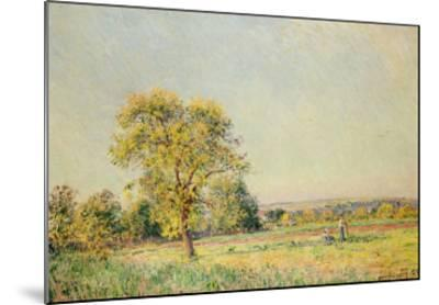A Summer's Day, 1886-Alfred Sisley-Mounted Giclee Print