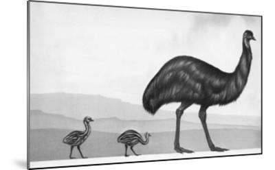 An Emu with Her Chicks-English School-Mounted Giclee Print