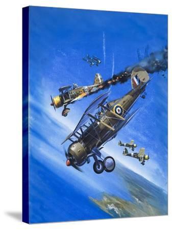 Gloster Gladiator-Wilf Hardy-Stretched Canvas Print