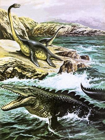 Plesiosaurus-Payne-Stretched Canvas Print