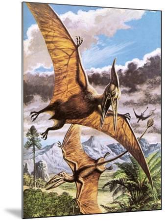 Pteranodon-Payne-Mounted Giclee Print