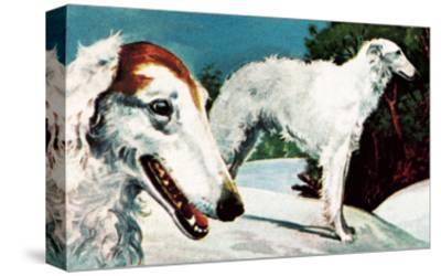 Borzoi-English School-Stretched Canvas Print