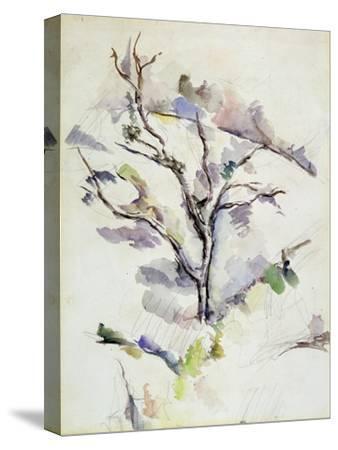 The Oak-Paul C?zanne-Stretched Canvas Print