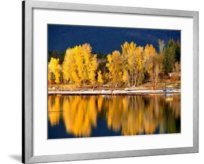 Autumn Colours on Shore of Lake Payette-David Ryan-Framed Photographic Print