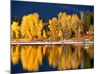 Autumn Colours on Shore of Lake Payette-David Ryan-Mounted Photographic Print