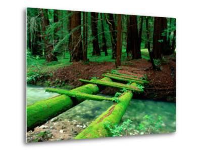 Bridge Covered in Moss over Little Sur River-Douglas Steakley-Metal Print