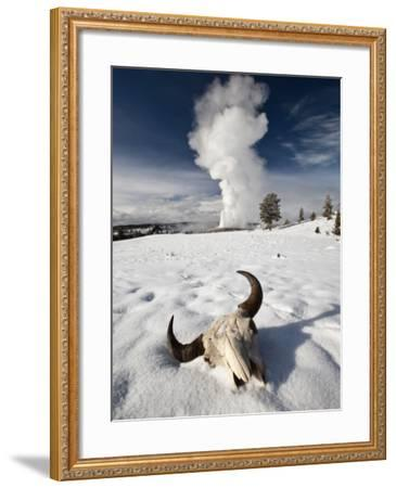 Buffalo Skull and Old Faithful Geyser-Douglas Steakley-Framed Photographic Print