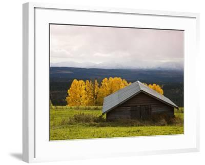 Traditional Wooden Barn, Yellow Aspens and Fjells with First Snow in Autumn-Christer Fredriksson-Framed Photographic Print