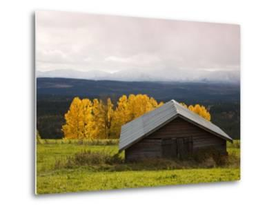 Traditional Wooden Barn, Yellow Aspens and Fjells with First Snow in Autumn-Christer Fredriksson-Metal Print