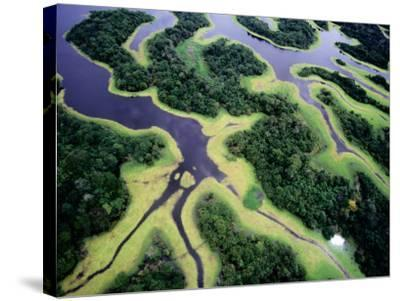 Overhead of Rio Negro-Diego Lezama-Stretched Canvas Print