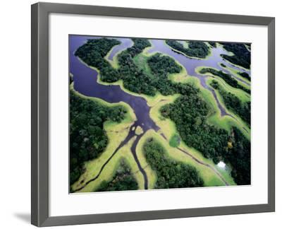 Overhead of Rio Negro-Diego Lezama-Framed Photographic Print