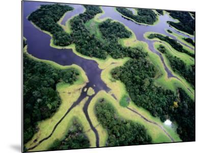 Overhead of Rio Negro-Diego Lezama-Mounted Photographic Print