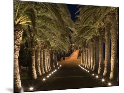 Palm-Lined Path and Pier at Night-Holger Leue-Mounted Photographic Print