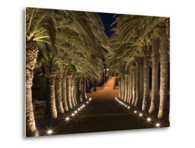 Palm-Lined Path and Pier at Night-Holger Leue-Metal Print