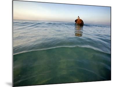 Elephant 'Rajes' Wading into Sea with His Mahout on Back-Johnny Haglund-Mounted Photographic Print