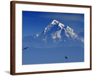Sunrise on Nanda Devi Peak in Indian Himalayas-Michael Gebicki-Framed Photographic Print