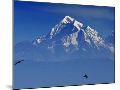 Sunrise on Nanda Devi Peak in Indian Himalayas-Michael Gebicki-Mounted Photographic Print