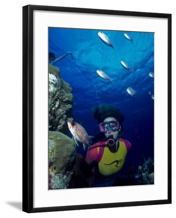 Diver Looking at Squirrelfish (Holocentrus Adscensionis) on Voral Head-Michael Lawrence-Framed Photographic Print