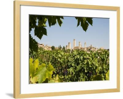 Towers of San Gimignano with Grapevines Producing Vernaccia Di San Gimignano Wine in Foreground-Olivier Cirendini-Framed Photographic Print