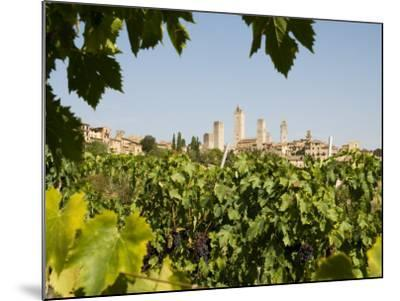 Towers of San Gimignano with Grapevines Producing Vernaccia Di San Gimignano Wine in Foreground-Olivier Cirendini-Mounted Photographic Print