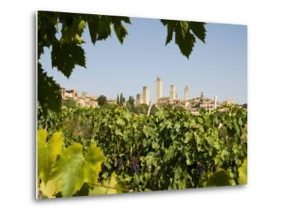 Towers of San Gimignano with Grapevines Producing Vernaccia Di San Gimignano Wine in Foreground-Olivier Cirendini-Metal Print