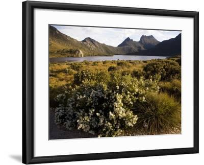 Dove Lake and Cradle Mountain-Andrew Bain-Framed Photographic Print