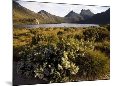 Dove Lake and Cradle Mountain-Andrew Bain-Mounted Photographic Print